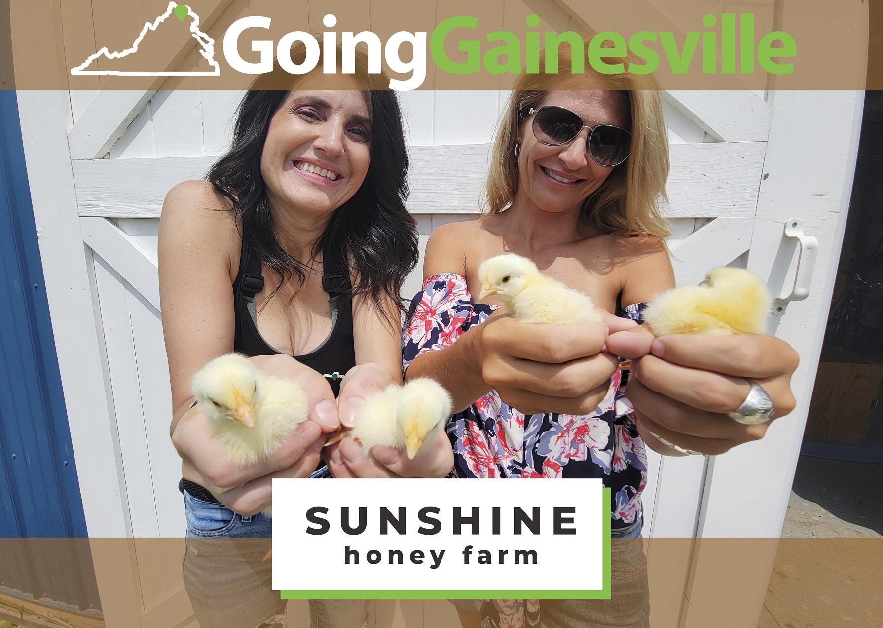Sunshine Honey Farm